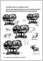 8-Kurie-miško-gyvūnai